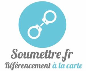 Soumettre.fr : Netlinking et rédaction de contenu